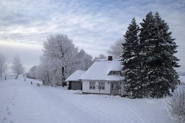 Winter in Stapelholm 0120