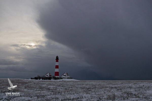 Leuchturm Westerhever Deutschland,Lighthouse Westerhever Germany 0013