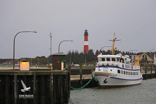 Leuchtturm Insel Sylt Hoernum Lighthouse Island Sylt Hoernum Germany 8668