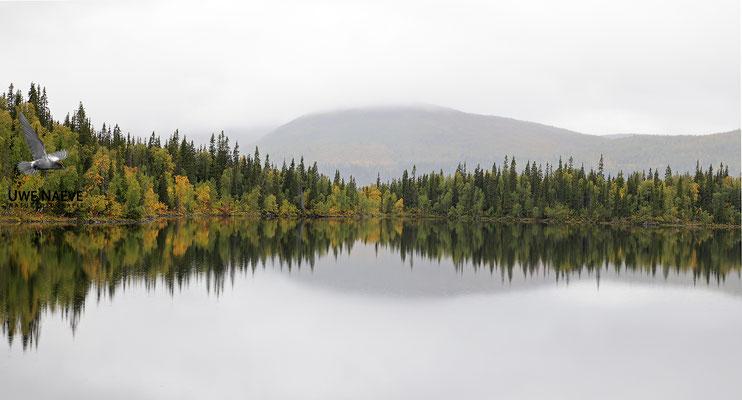 Schwedisch Lappland 6540