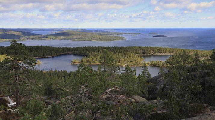 Skuleskogen Nationalpark 6823