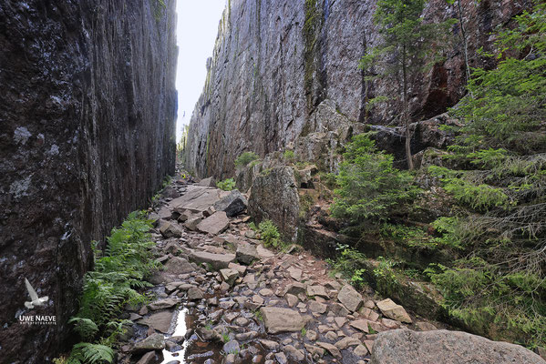 Slattdalsskrevanschlucht,Skuleskogen Nationalpark 6778