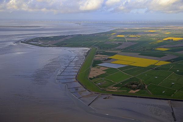 Wattenmeer bei Ebbe vor Nordstrand 1279
