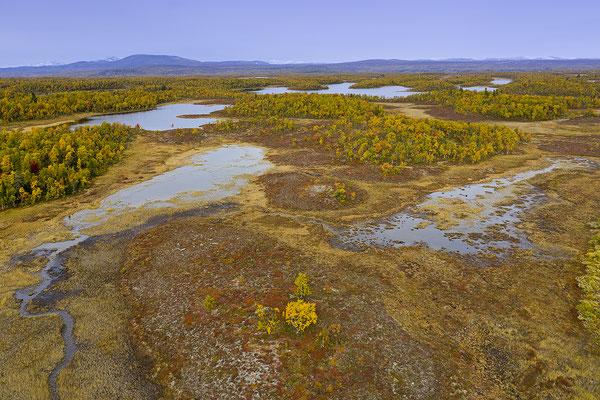 Herbstlandschaft Flatruet 0966