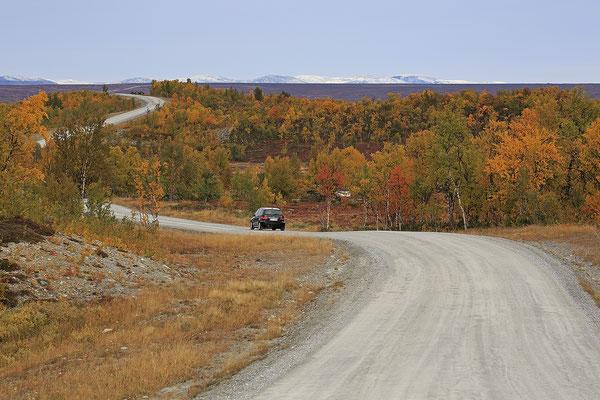 Herbstlandschaft Flatruet 6163