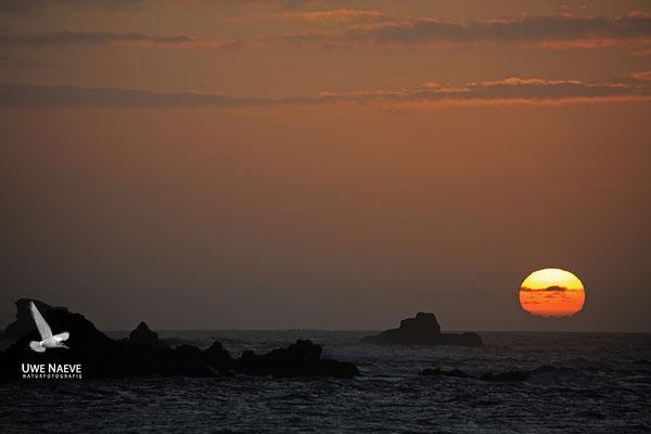 Sonnenuntergang bei Puerto de la Cruz 7009