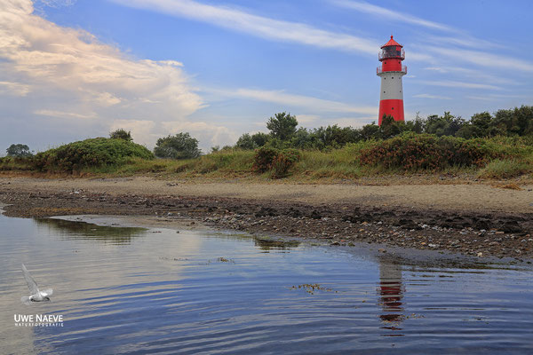Leuchtturm Falshöft Ostsee Deutschland,Lighthouse Falshoeft Germany 8886