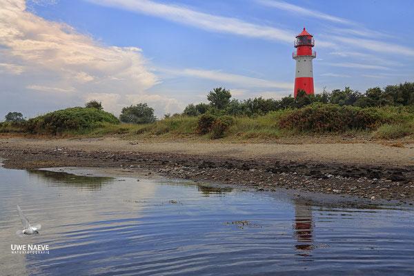 Leuchtturm Falshöft Ostsee Deutschland,Lighthouse Falshoeft Germany 8886