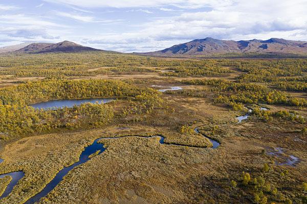 Herbstlandschaft Flatruet 0732