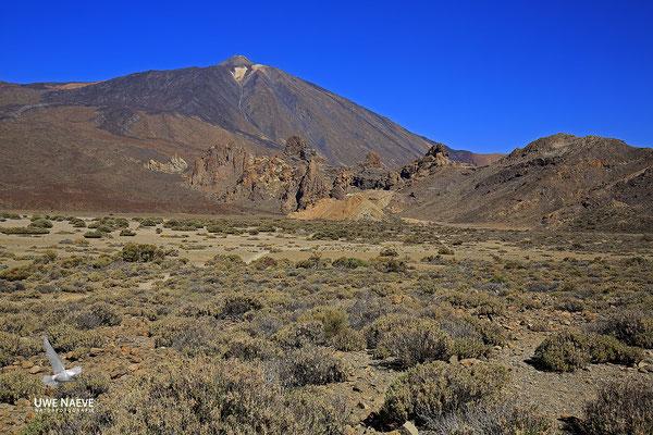 El Teide 6222