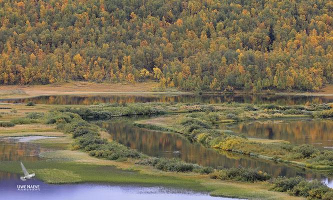 Herbstlandschaft 6479