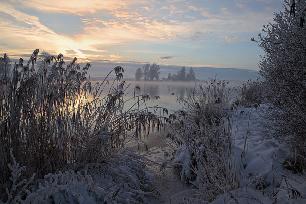 Winterabend an der Eider bei Bargen 0115