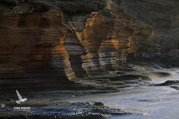 Naturdenkmal Montana Amarilla 5452