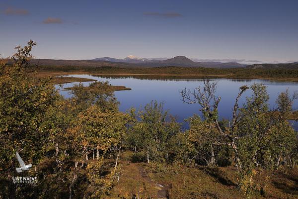 Herbstlandschaft Flatruet 5834