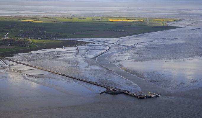 Wattenmeer bei Ebbe vor Insel Pellworm 1261