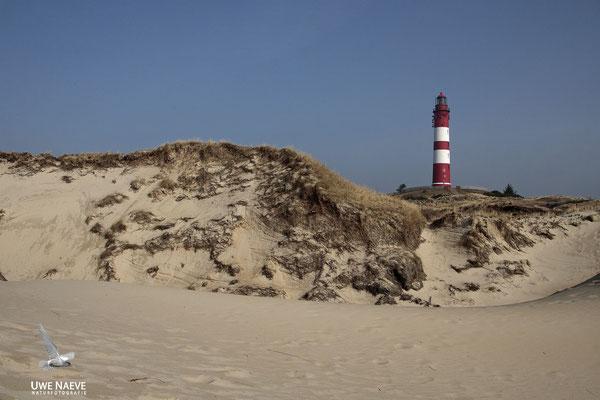 Leuchtturm Insel Amrum,Deutshland,Lighthoue Island Amrum, Germany 0025