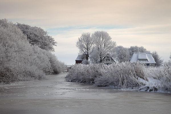 Winter an der Alten Sorge bei Fuenfmuehlen 0130