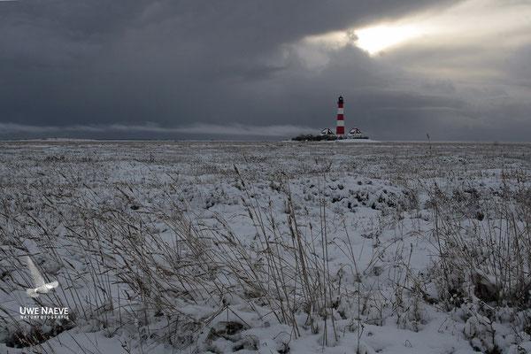 Leuchturm Westerhever Deutschland,Lighthouse Westerhever Germany 0015