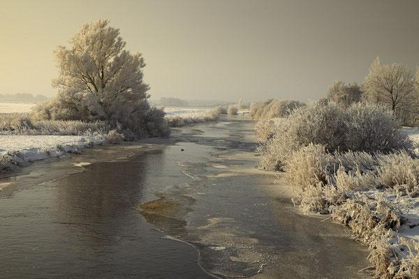 Winter an der Sorge 0120