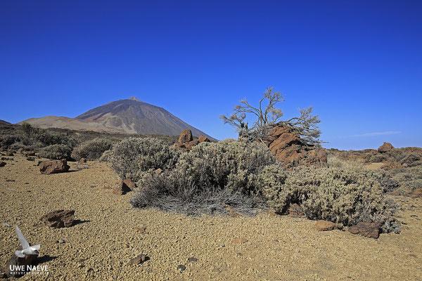 El Teide 6210