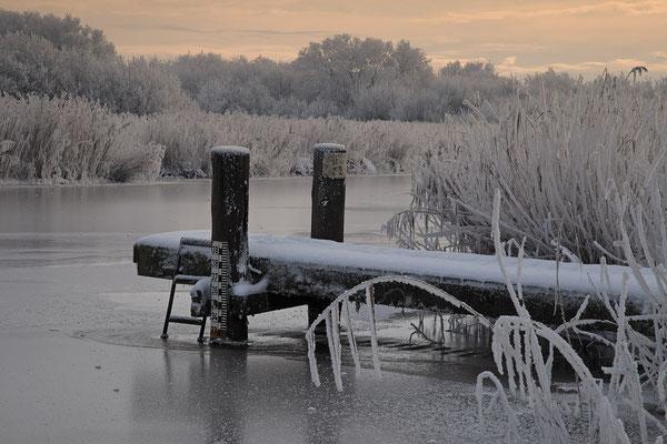 Winter an der Alten Sorge bei Fuenfmuehlen 0129
