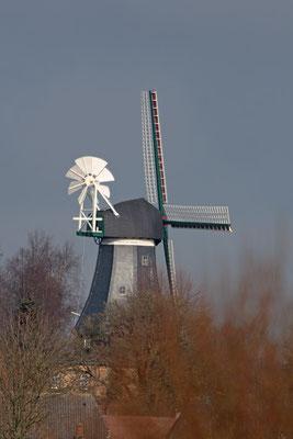 Bergenhusen Mühle 0178