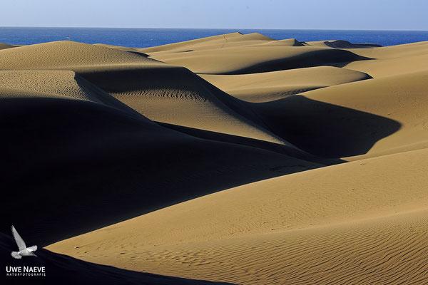 Duenenlandschaft bei Maspalomas Gran Canaria 2500