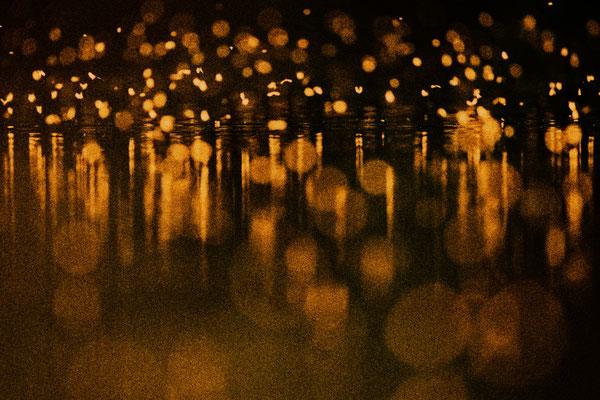 Tanz der Muecken im abendlichem Gegenlicht  über Wasser 0004