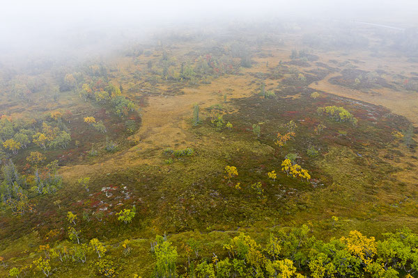 Herbstlandschaft Flatruet 0870