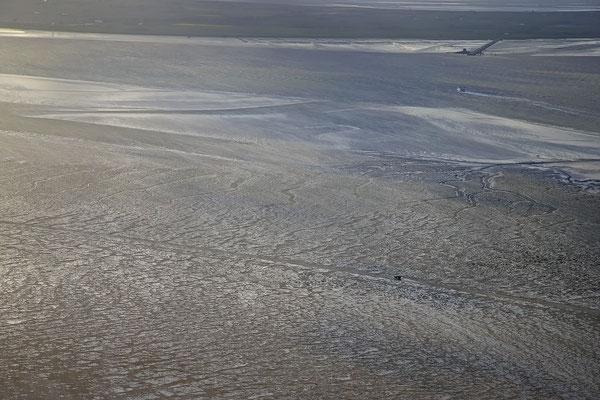 Wattenmeer bei Ebbe vor Insel Pellworm 1102
