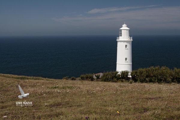 Leuchtturm Trevose Head Cornwall England 01574