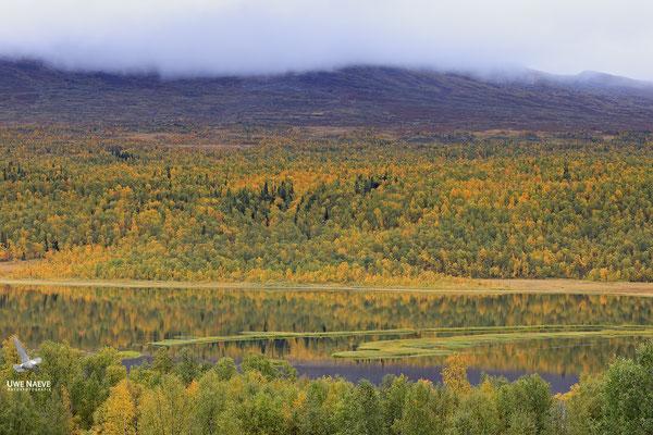 Herbstlandschaft 6493