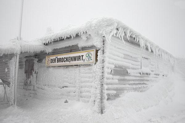 Harz, Brocken ,im Winter 8671