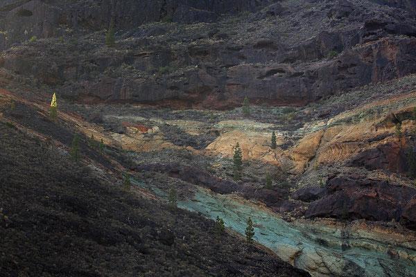 Gebirge auf Gran Canaria 9540