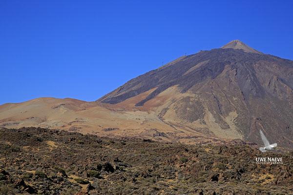 El Teide 6204