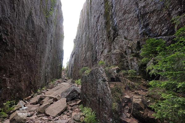Slattdalsskrevanschlucht,Skuleskogen Nationalpark 6904