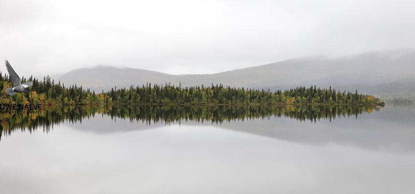 Schwedisch Lappland 6562