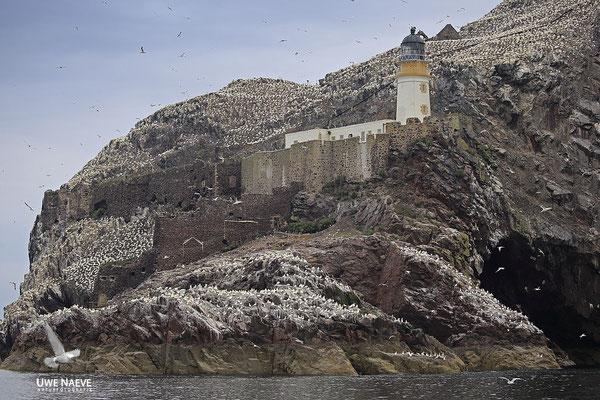 Bass Rock Coast North Berwick Scotland 5335
