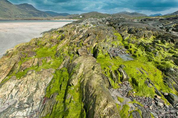 Küstenabschnitt in Connemara, Irland