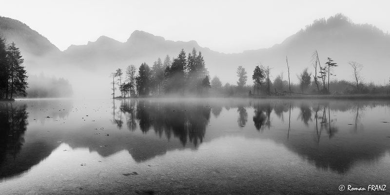 Morgennebel am Almsee