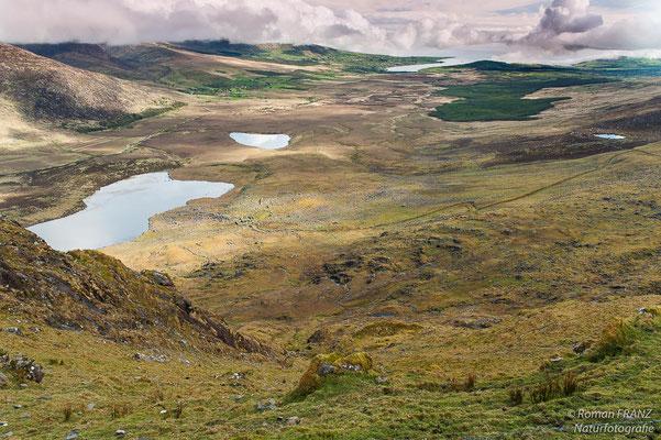 Blick in das Tal auf der Halbinsel Dingle,Irland