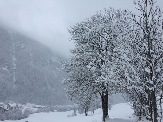 Römerweg Leukerbad im Winterwunderland