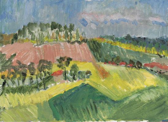 2012  Felder bei Ganzow 50x40 Öl