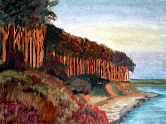 2002  Steilküste 30x40 Öl
