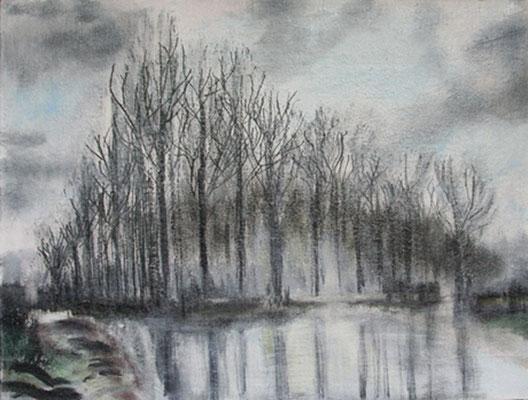 2006  Schönheit kahler Bäume  30x40 Öl