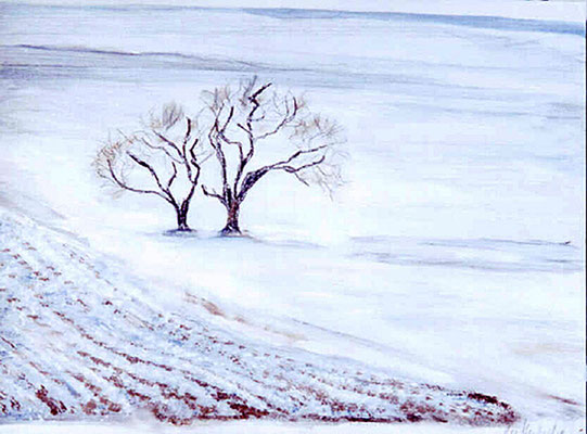 2006  Feld im Winter 27x36 Öl