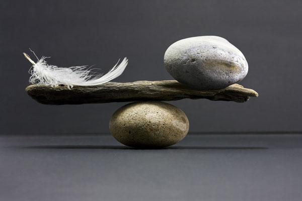 Ist es verrückt wie eine Feder das ganze im Gleichgewicht hält?!