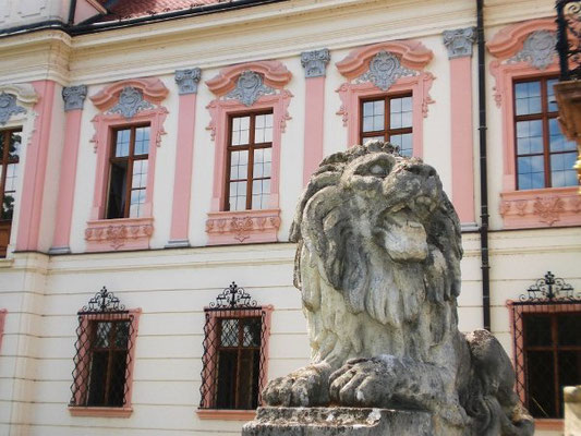 Travel hungary theroaminglioness adventure