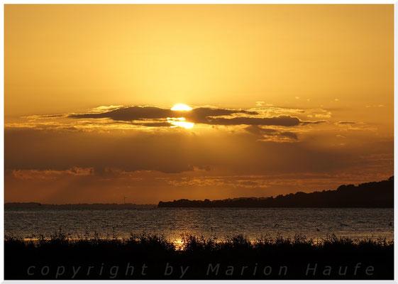 Sonnenuntergang über dem Reddevitzer Höft.