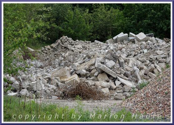 Steinschmätzer-Brutgebiet auf einem Betonschuttplatz